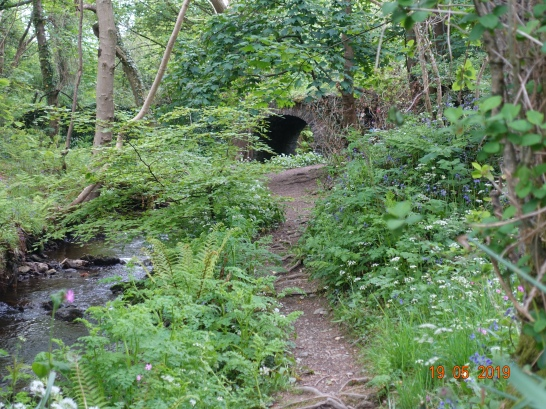 The real 'Fairy Bridge'