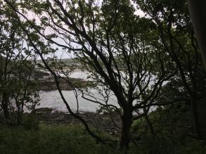 HIdden view 2